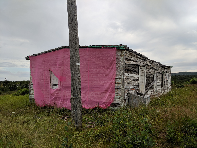 Newfoundland 2019 small_IMG_20190823_181454