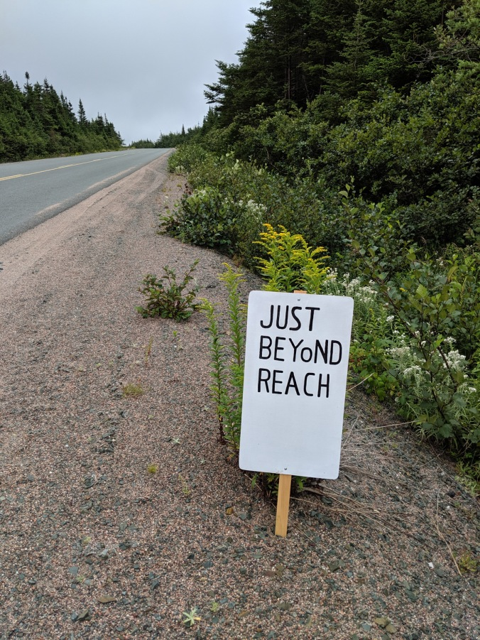 Newfoundland 2019 small_IMG_20190824_112321