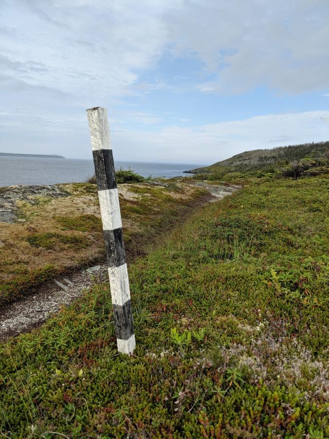 Newfoundland 2019 small_IMG_20190823_160657